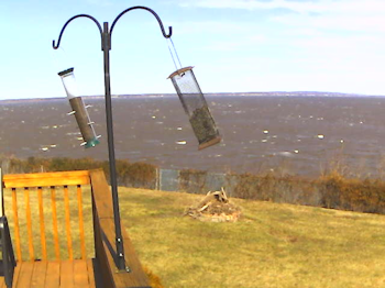 Yes. It's windy ...